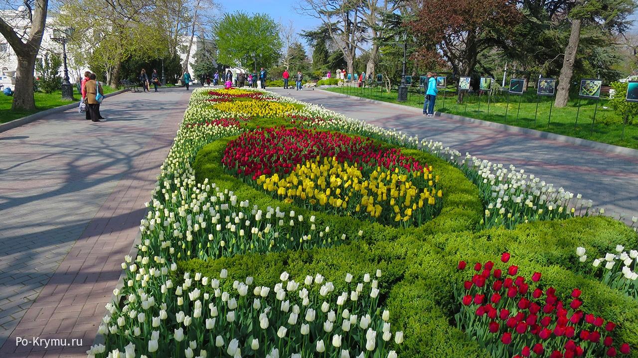 Цветущие улицы крымских городов