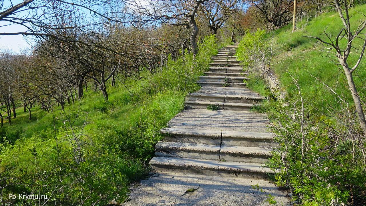 длинная-лестница-в-парке