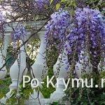 За что мы любим Крым: 50 поводов для любви