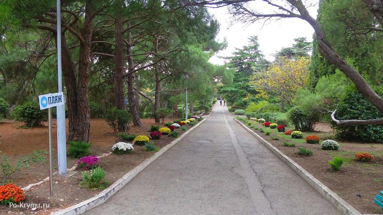 Цветущие парковые дорожки
