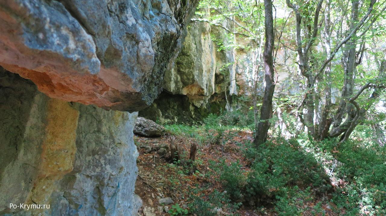 Скалы и иглица понтийская под Севастополем.