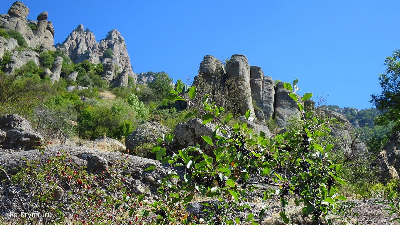 Столбы горы Демерджи