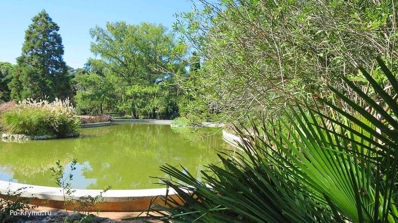 Один из парков Никитского Ботанического сада - Монтедор.