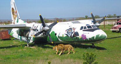 Сафари-парк львов Тайган — хищники без клеток!