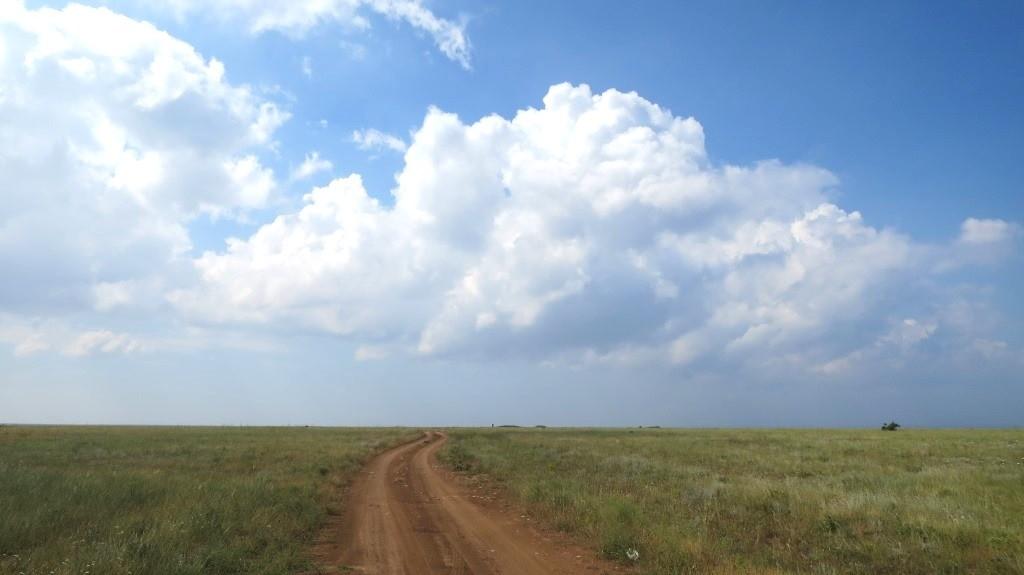 Природный парк на Тарханкуте.