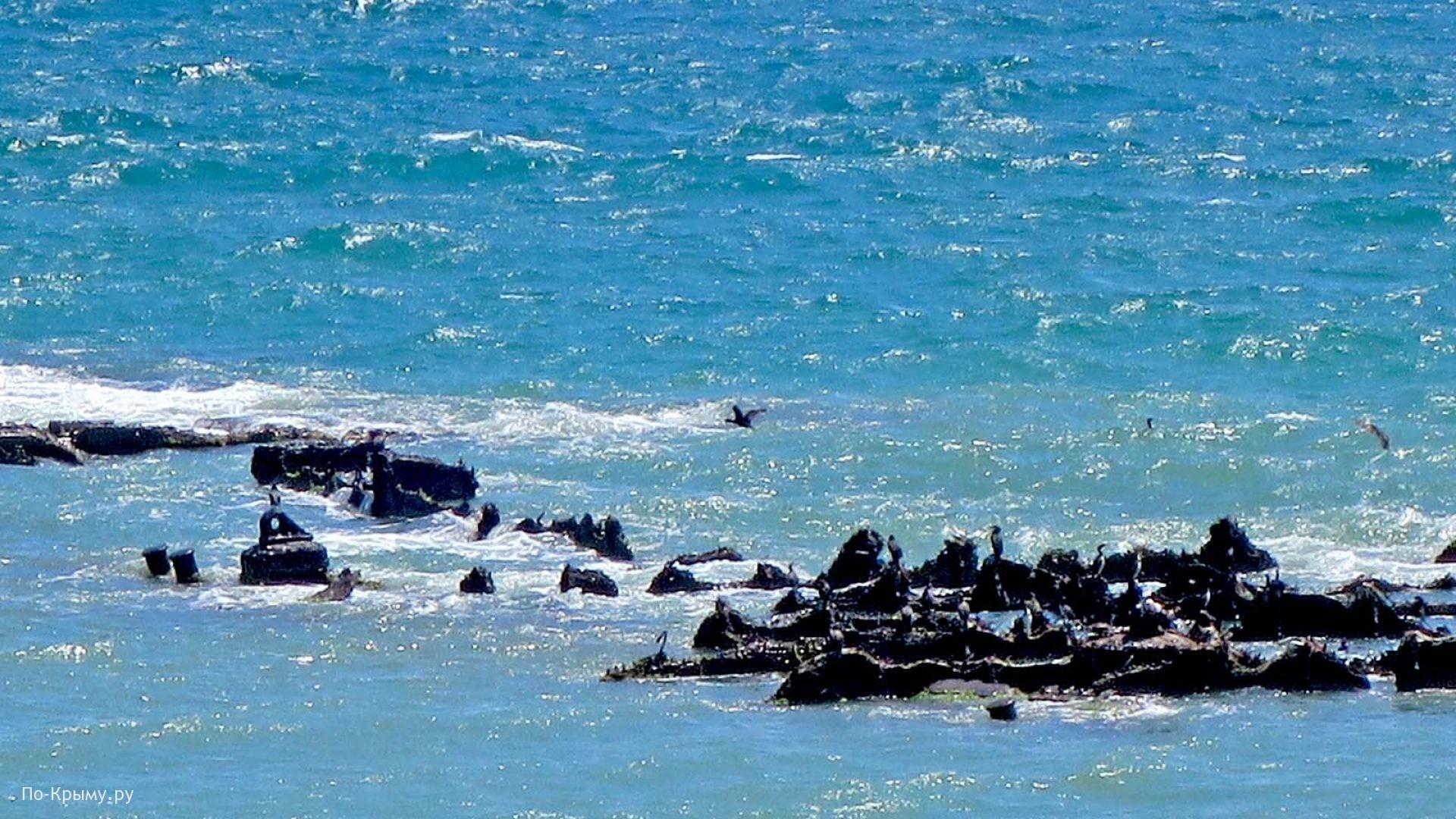 Острова на черноморское побережье Крыма