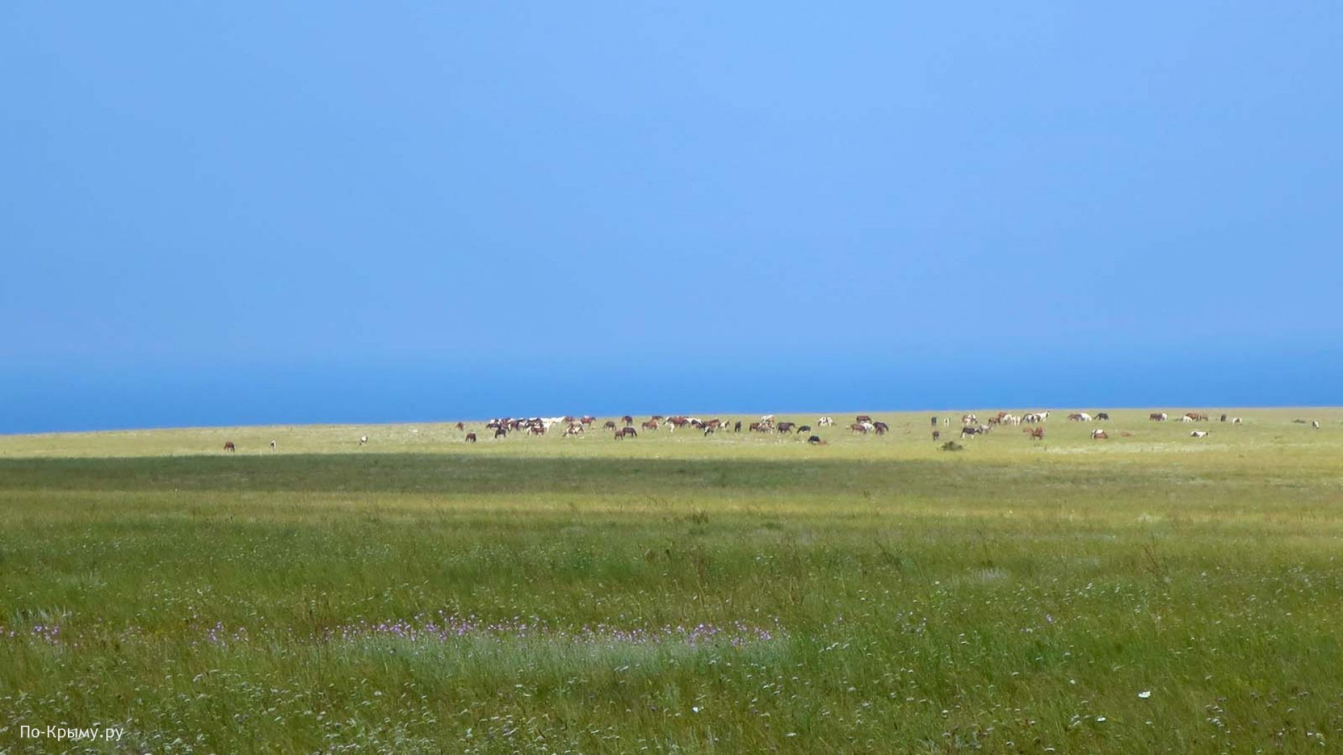 Тарханкутский национальный природный парк