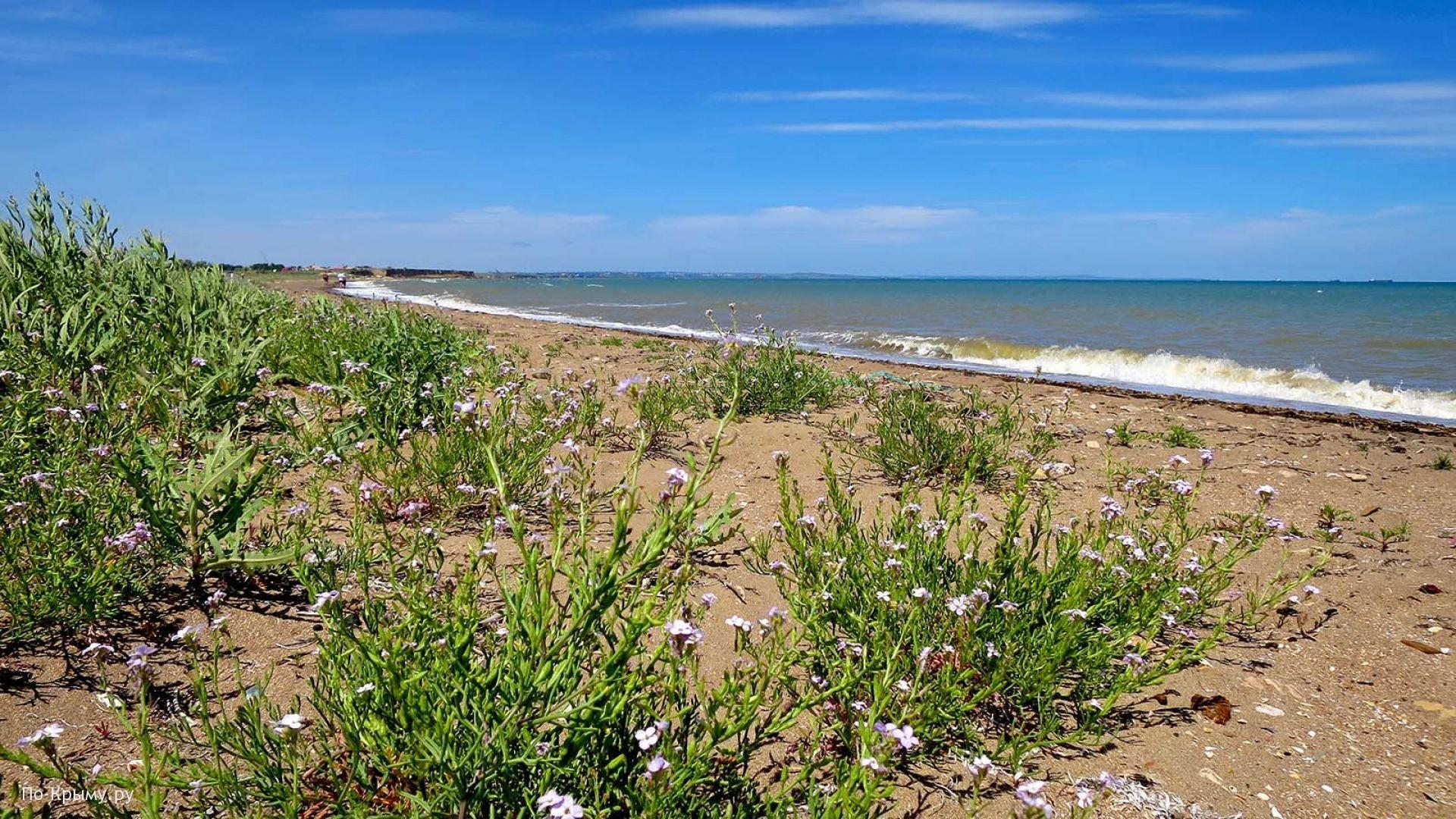 Керченский пролив. Песчаный пляж у озера Тобечикское