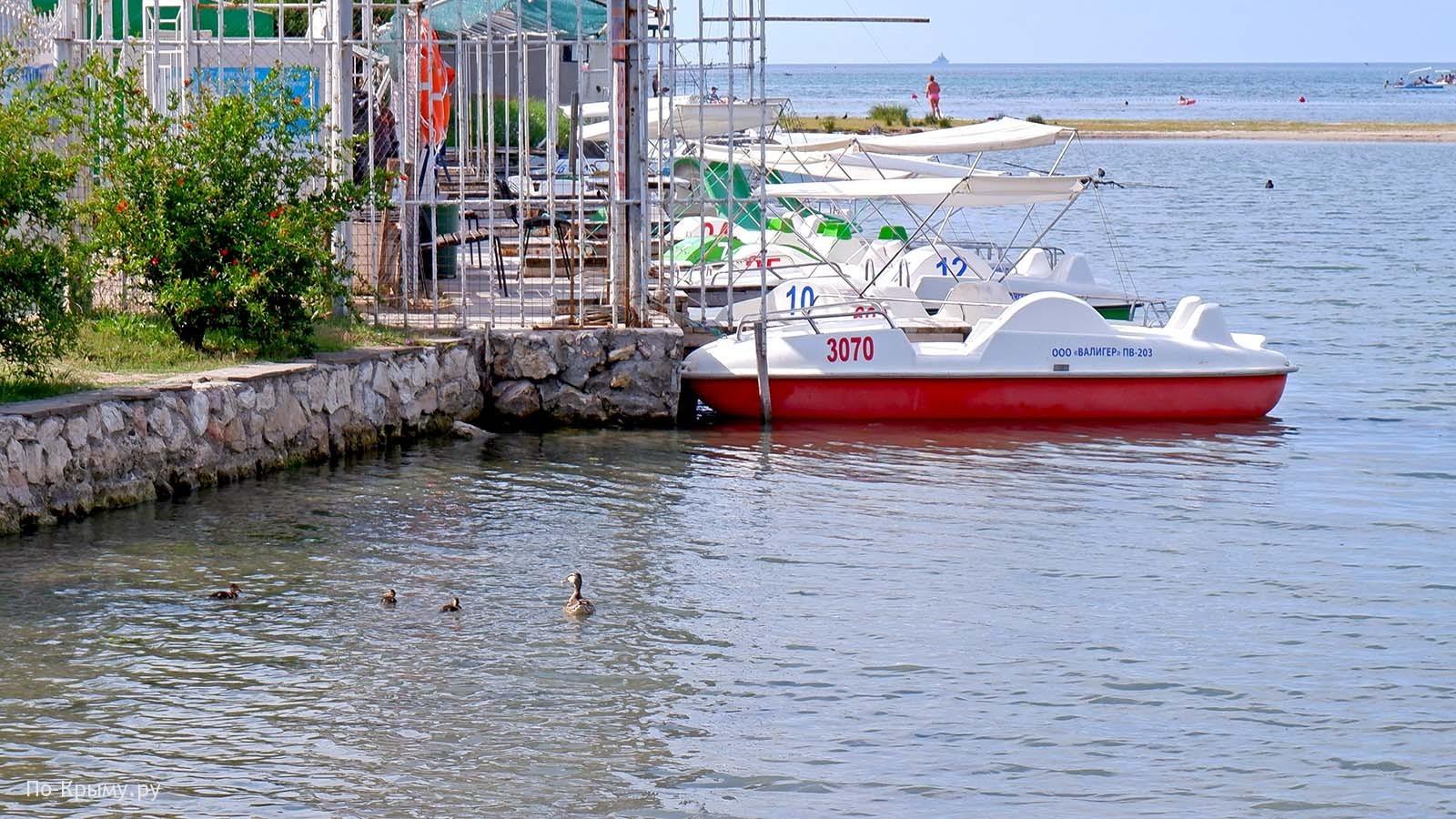 Бухта Омега, пляж, прокат катамаранов