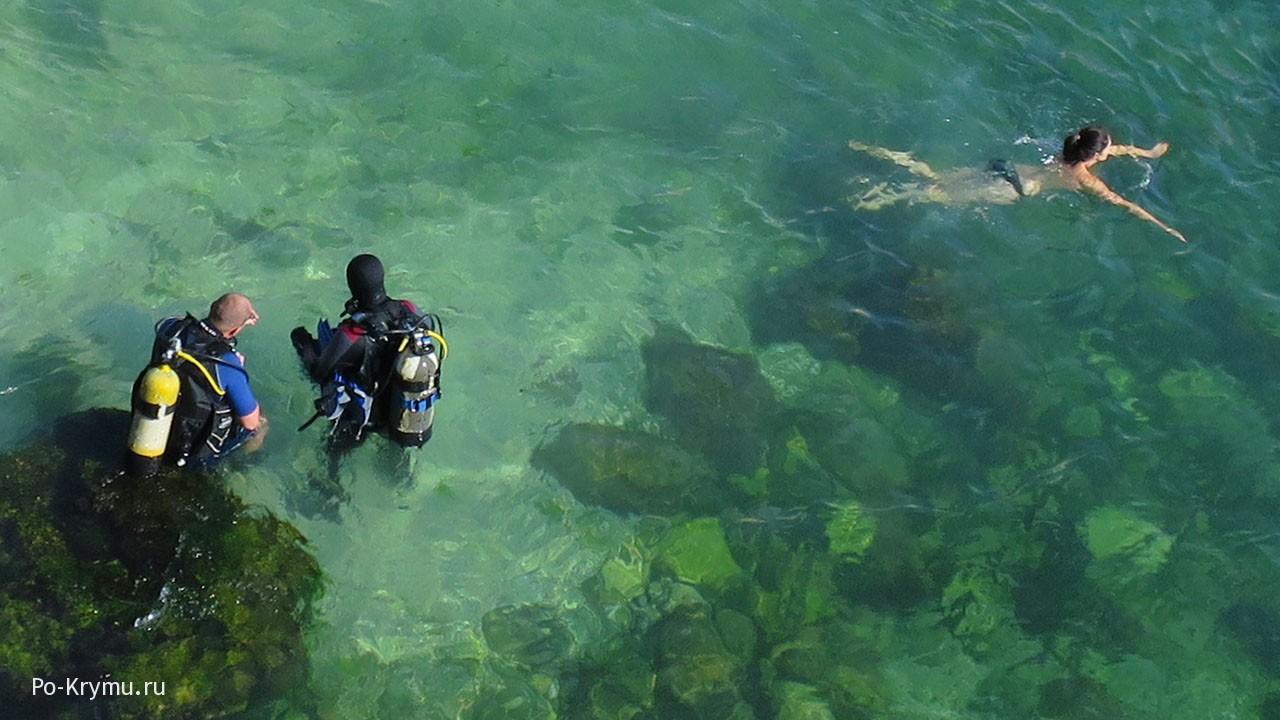 Дайверы в прозрачной черноморской воде.