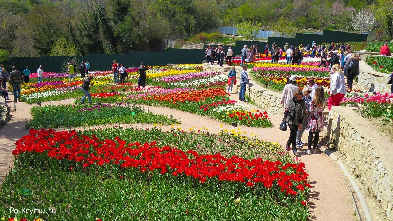 Настоящий цветочный праздник.