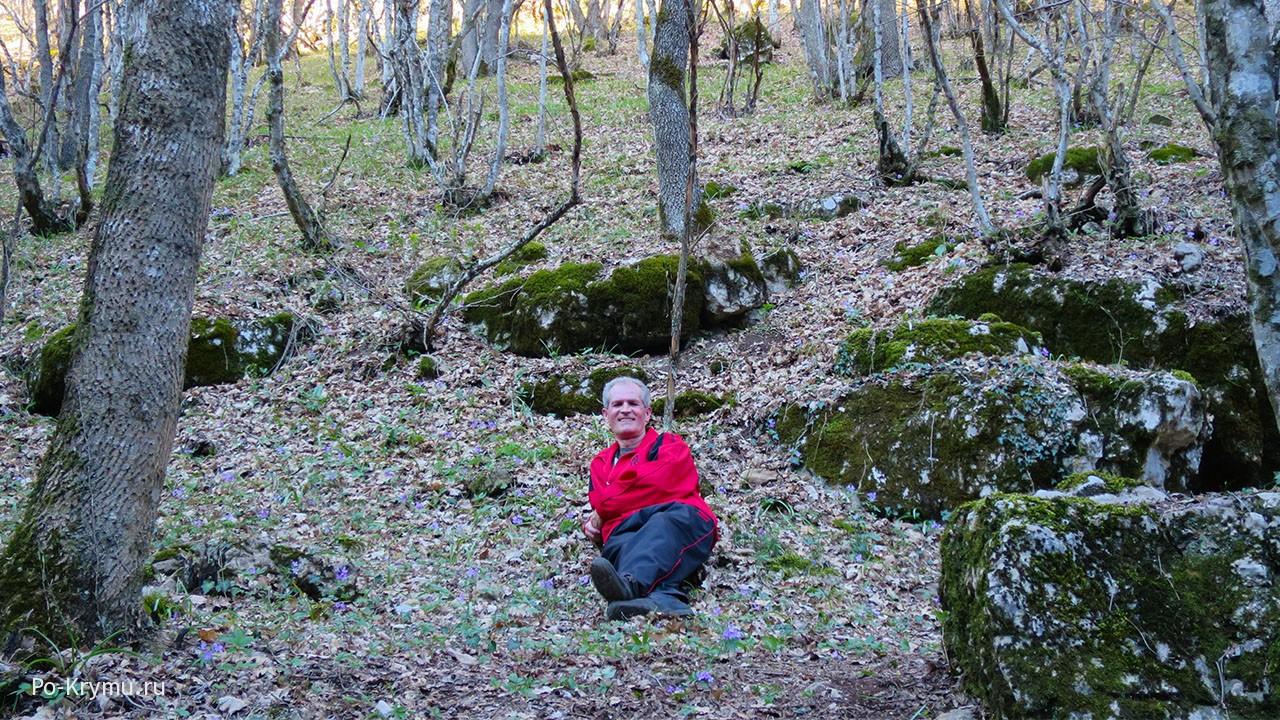 Лес Байдарской долины в апреле, фото