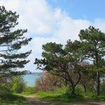 Севастополь весной — прогулка по Корабельной стороне