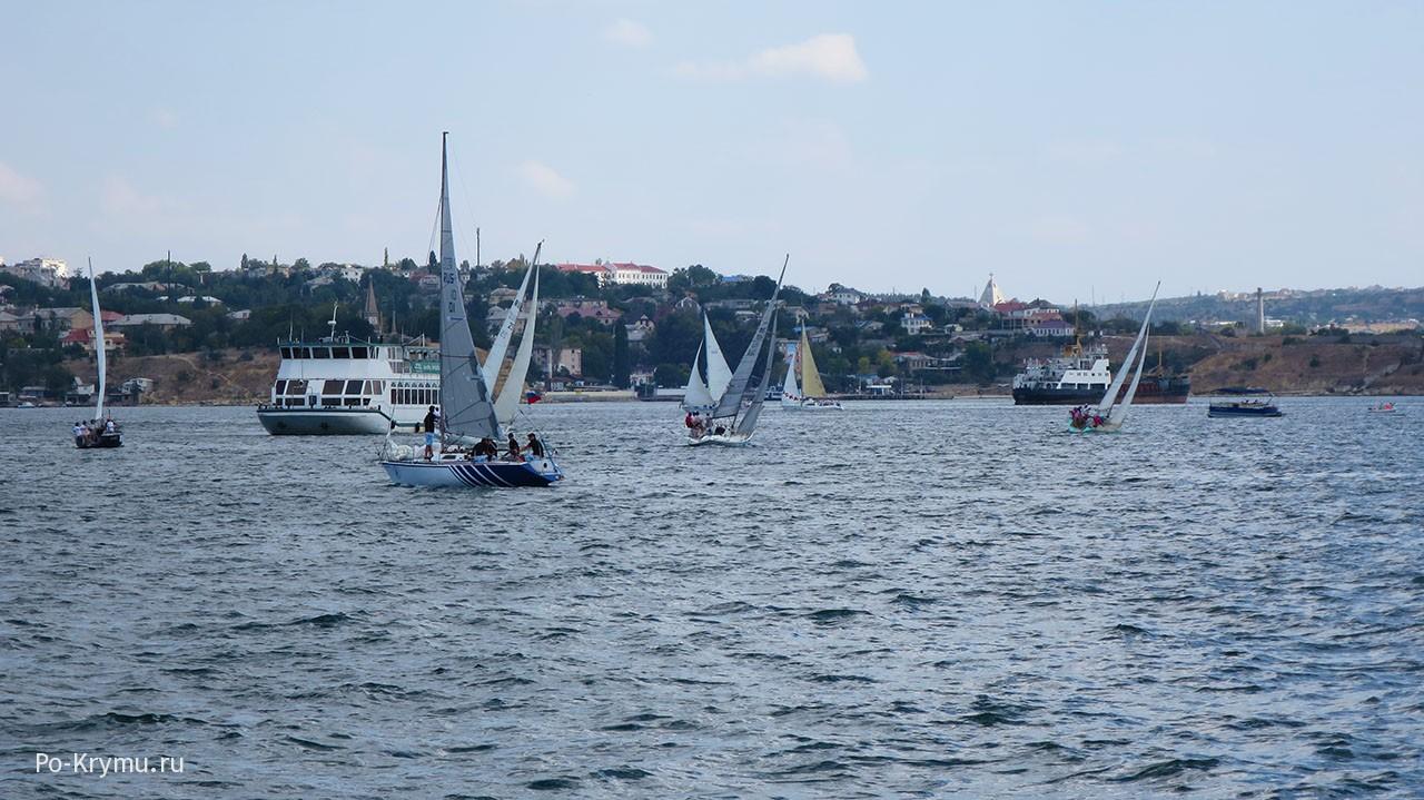Волны цвета морендо в Севастопольской бухте