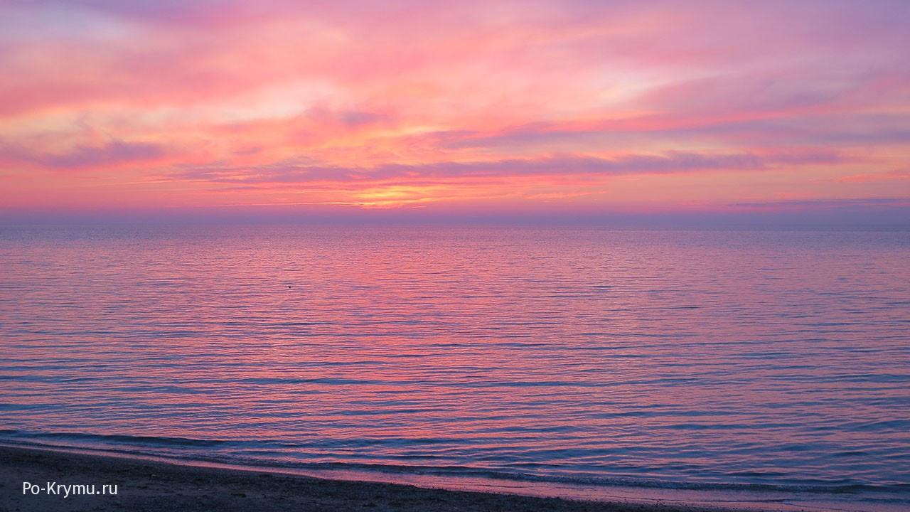 Сиреневые цвета на закате