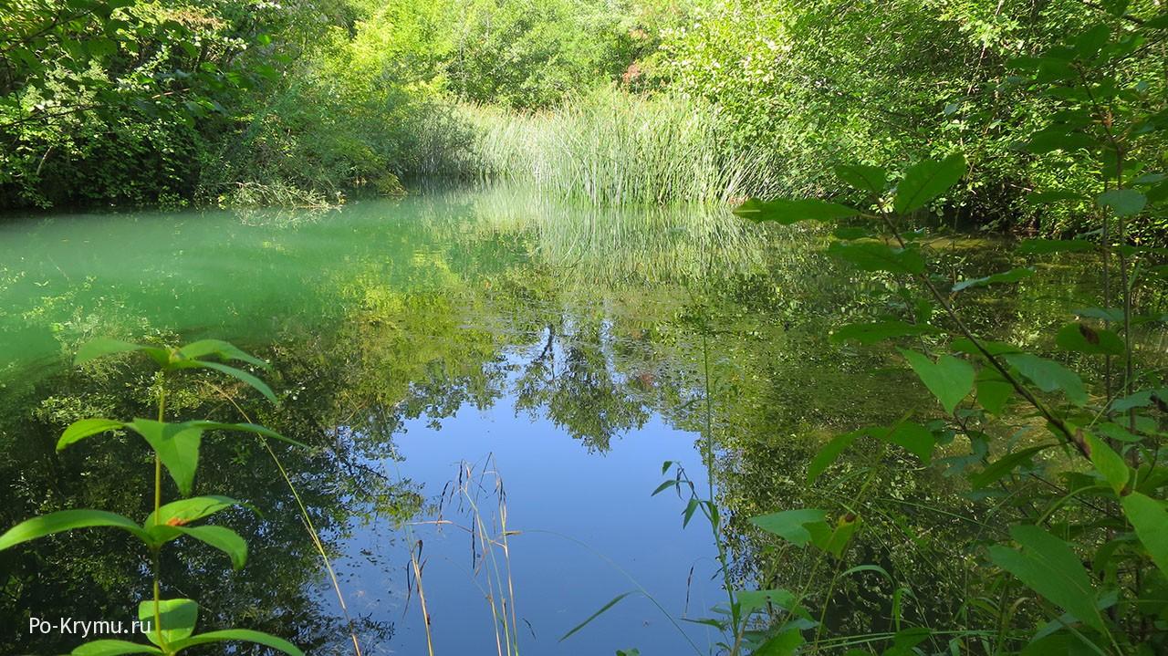 Замерла речка Черная, Крым.