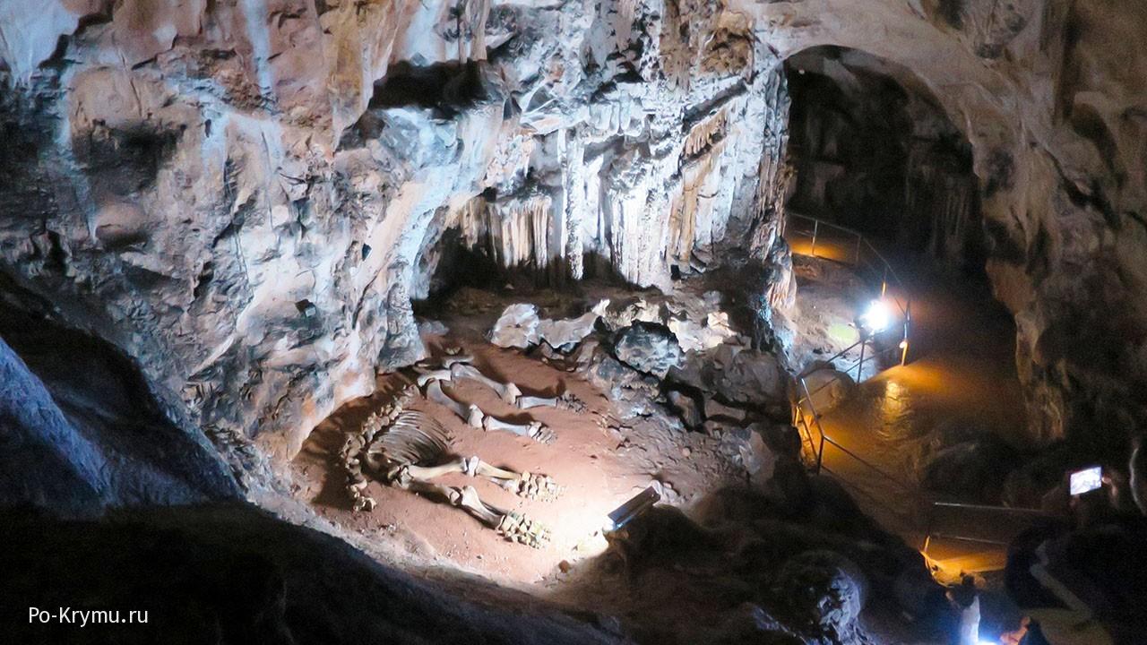 Мамонт в пещере Эмине-Баир-Хосар.