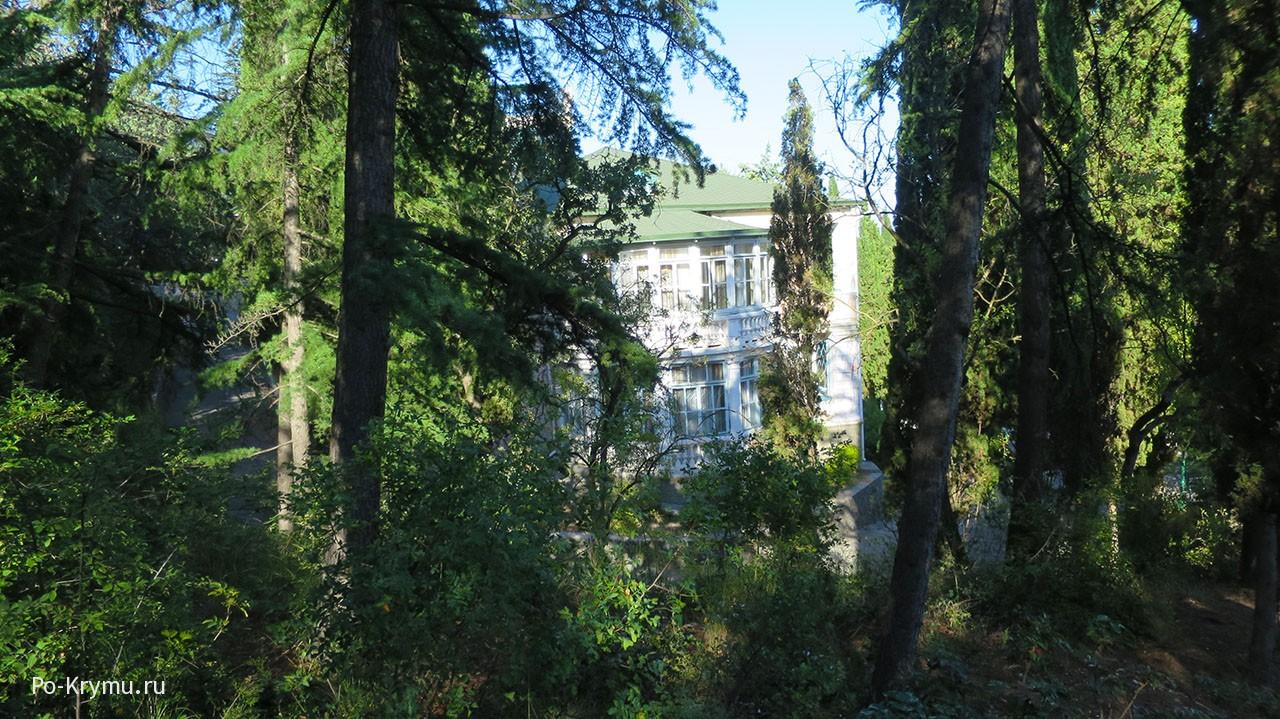 Старые здания Профессорского уголка.