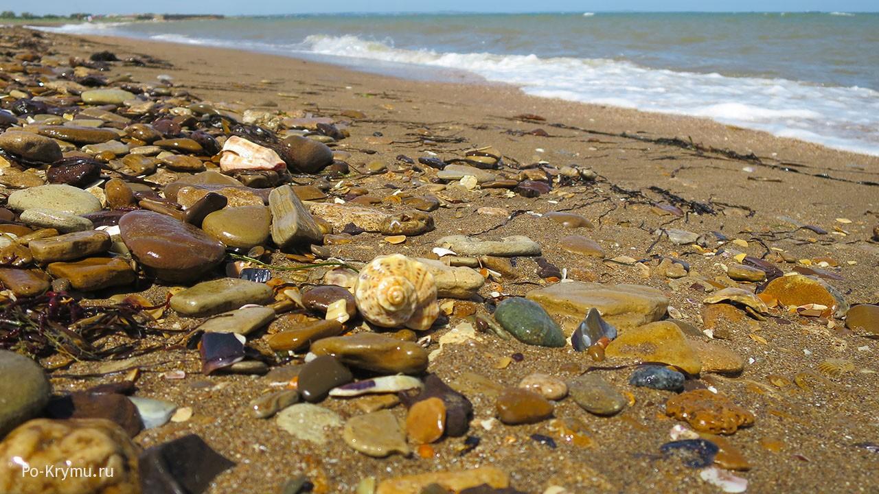 Пляж черноморский.