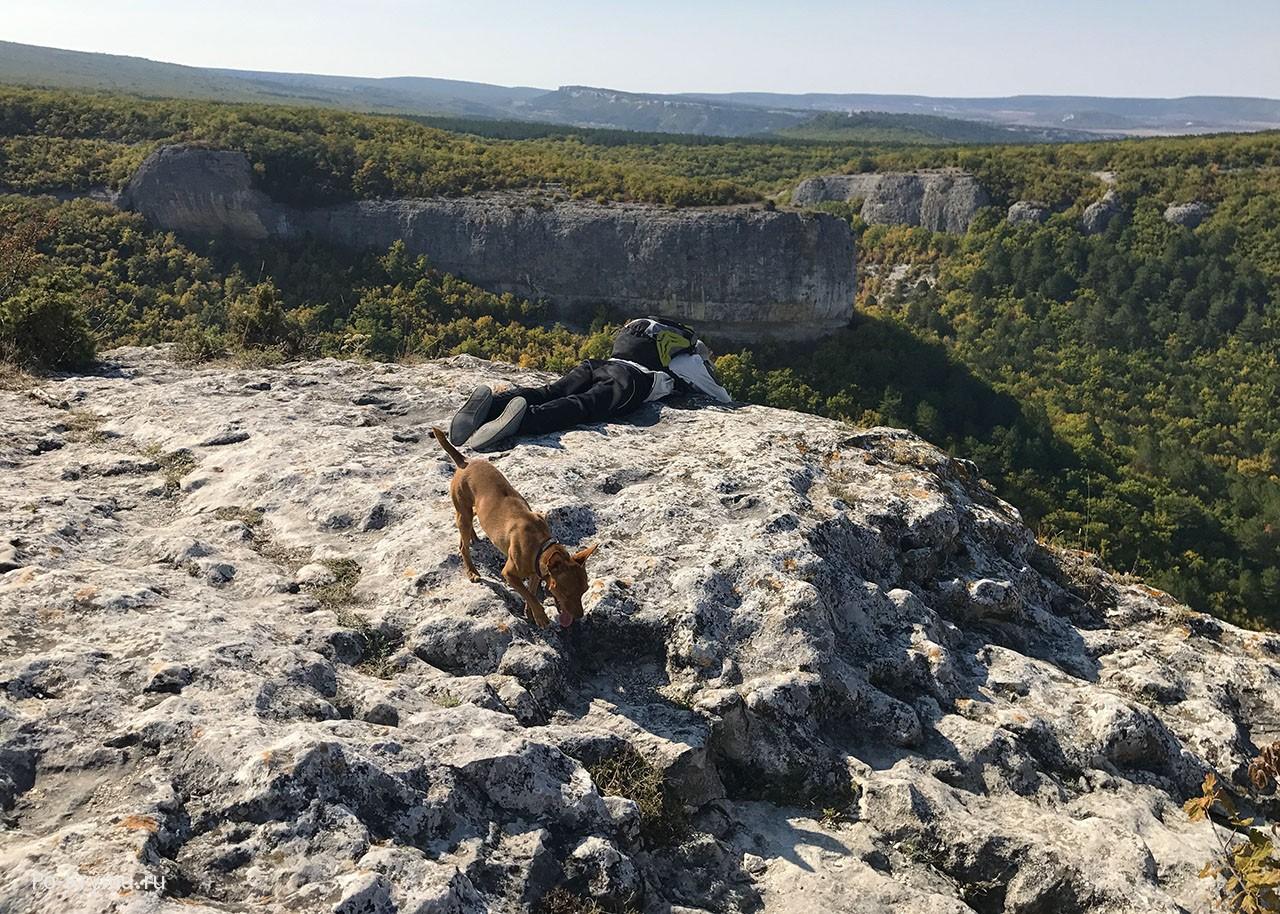 Крым, Бахчисарай, горы, собака.