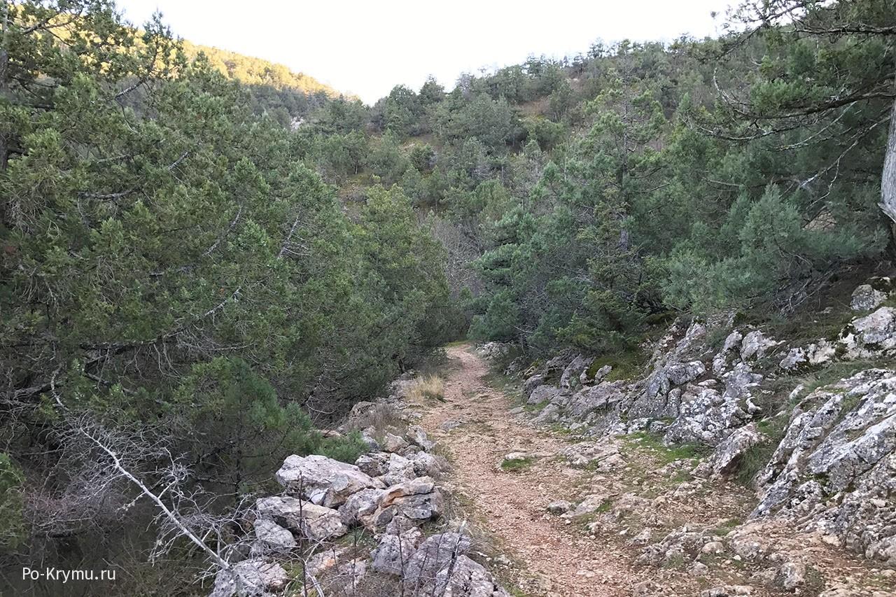 Козьи тропы в горах