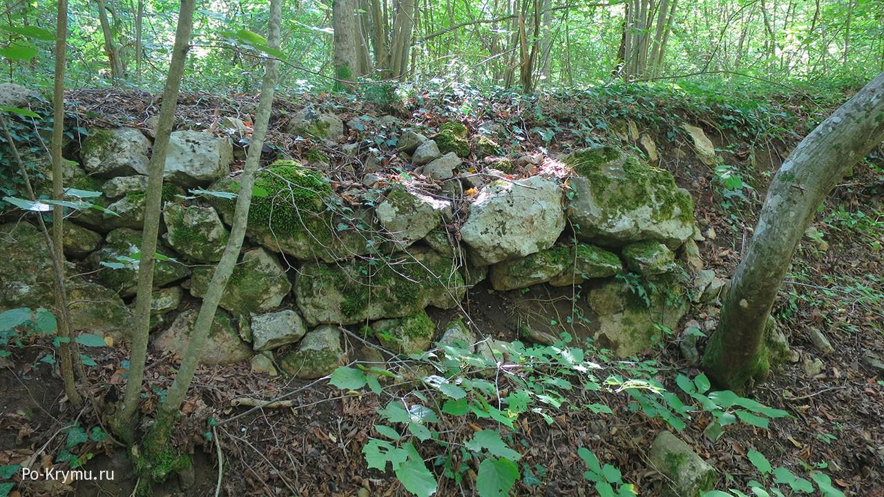 Руины у Черной речки.