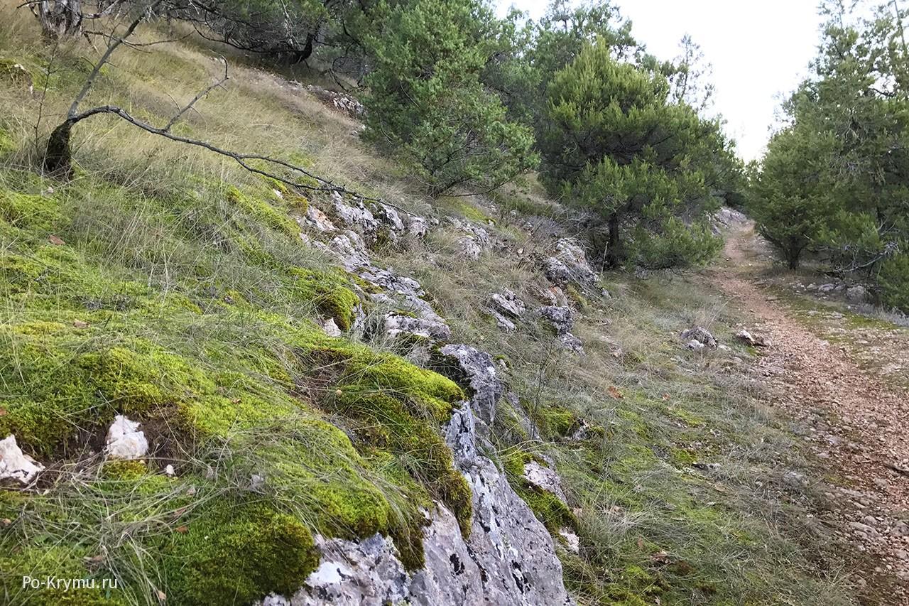 Старая римская вьючная тропа