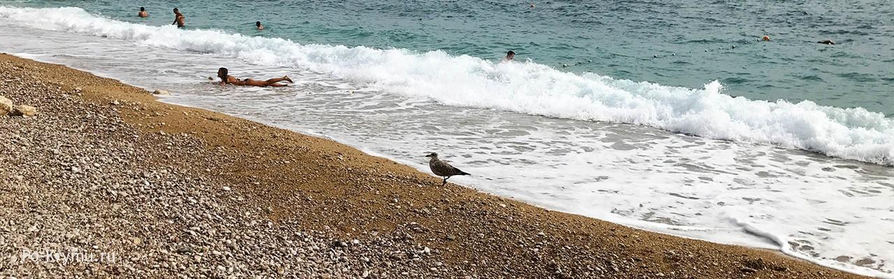 Васили - один из лучших пляжей Севастополя