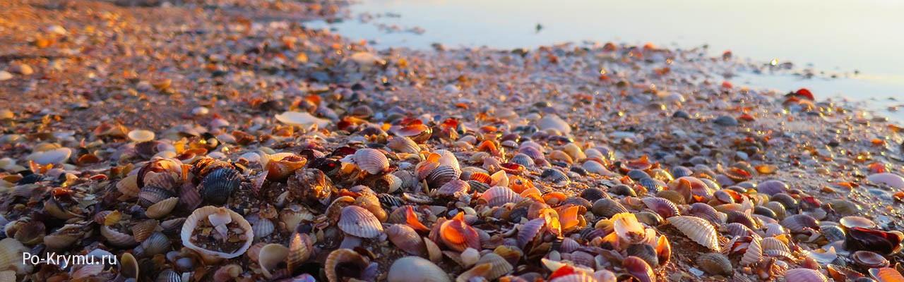 Лучшие пляжи западного побережья Крыма