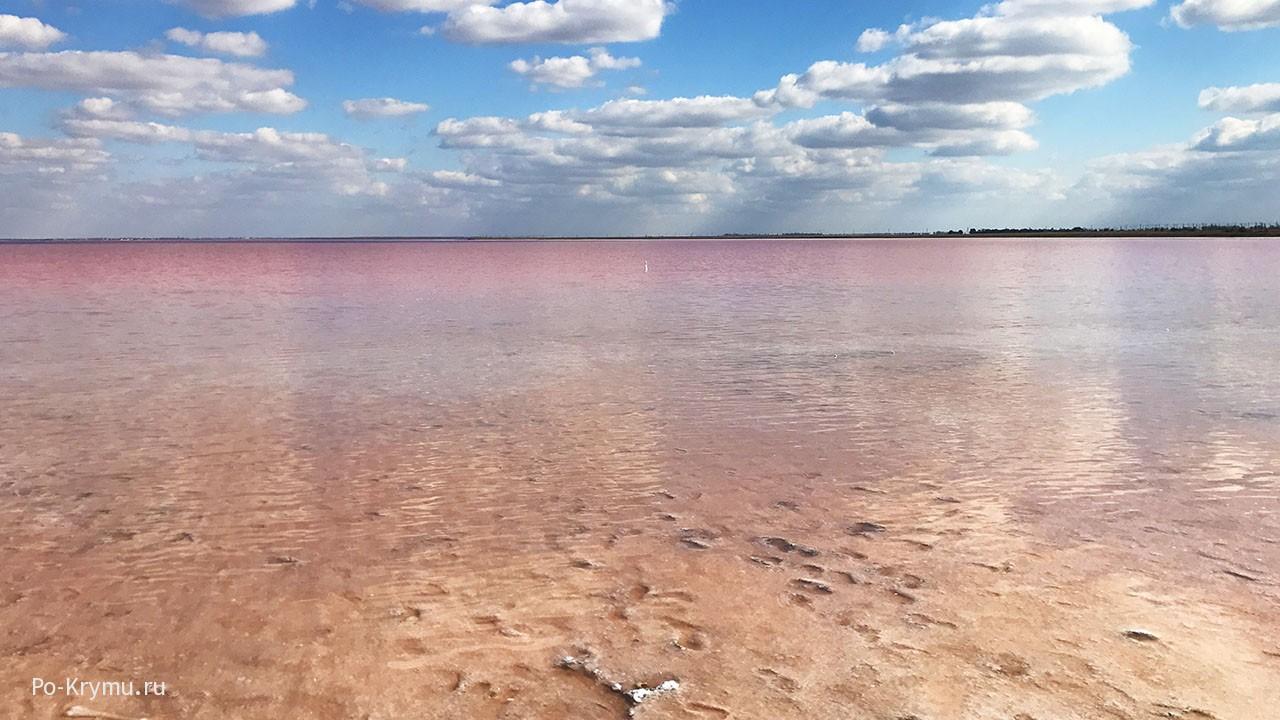 Фотографии соленого озера розового цвета - Сасык-Сиваш город Саки.