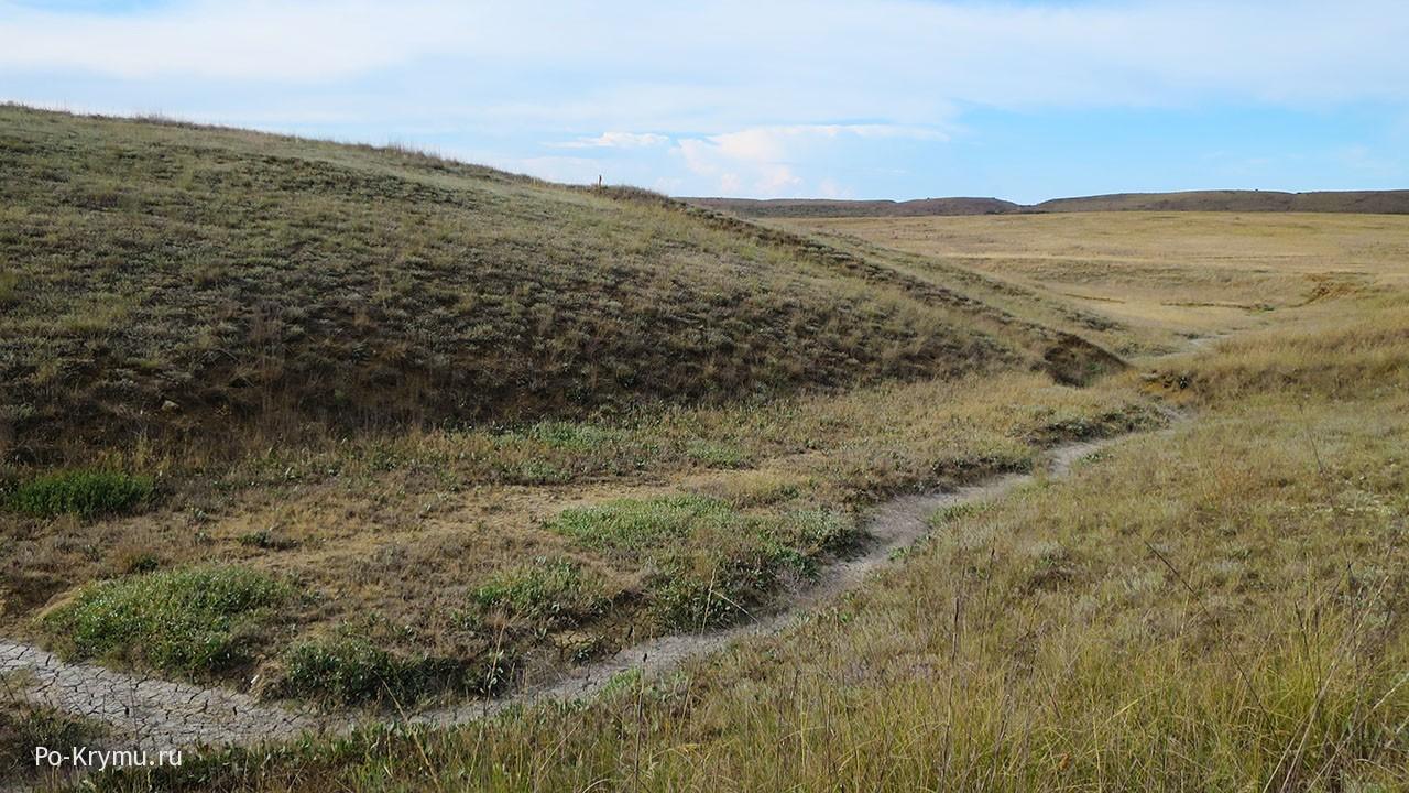 Булганакское сопочное поле в июле.