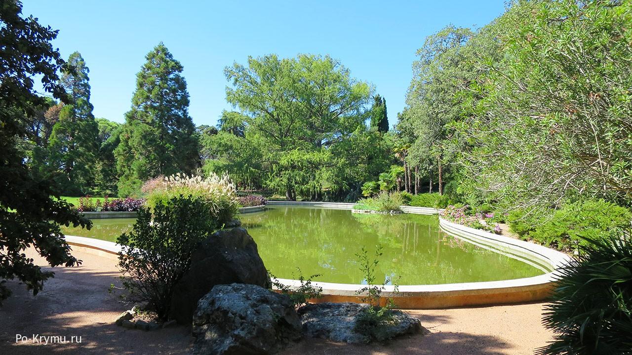 Крым, Никитский ботанический сад, парк Монтедор.