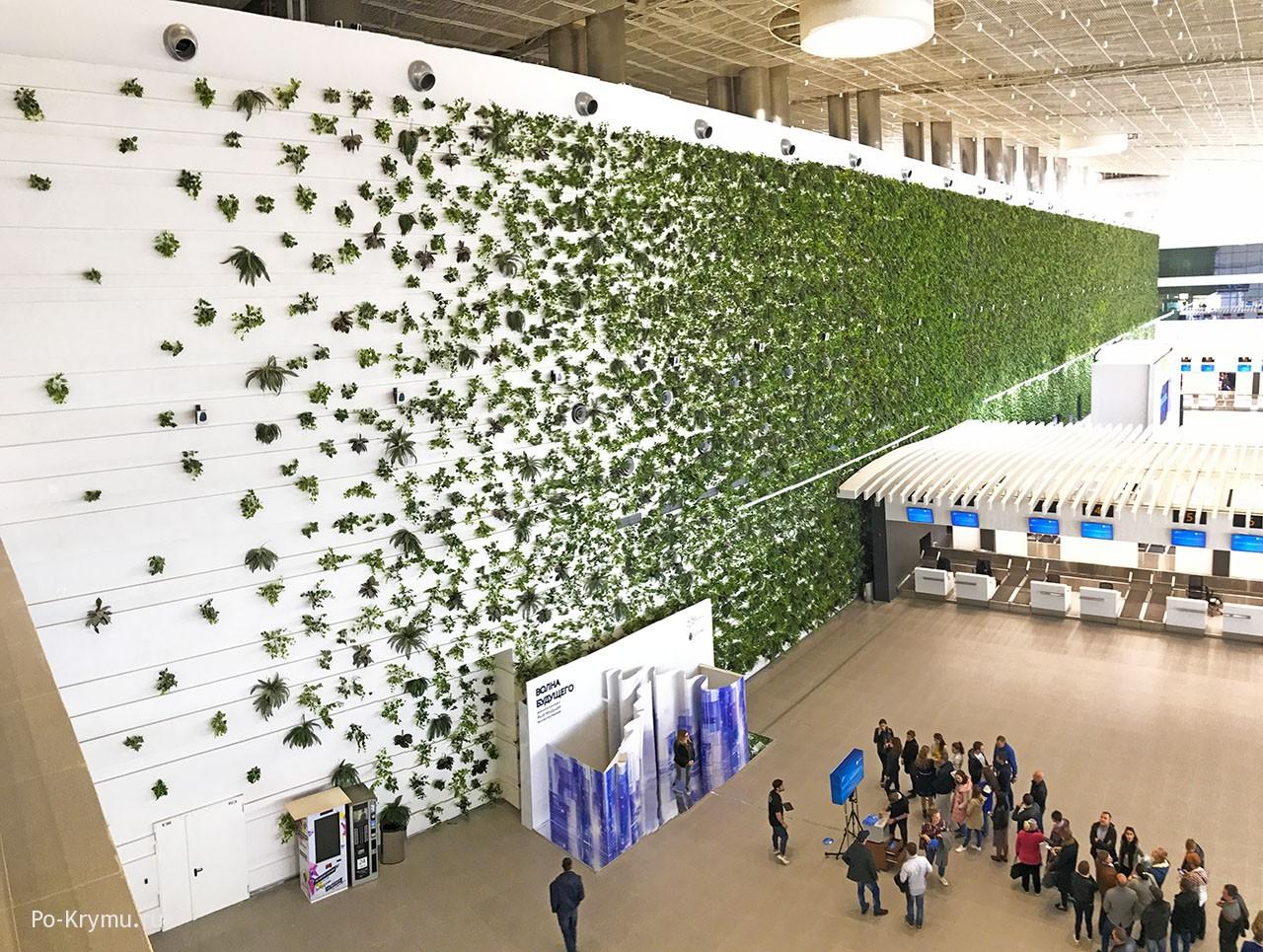 Фото зеленой стены нового терминала