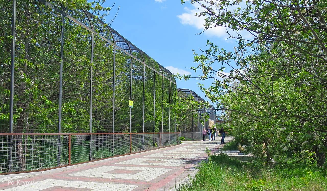 Просторная территория зоопарка Тайган, Крым