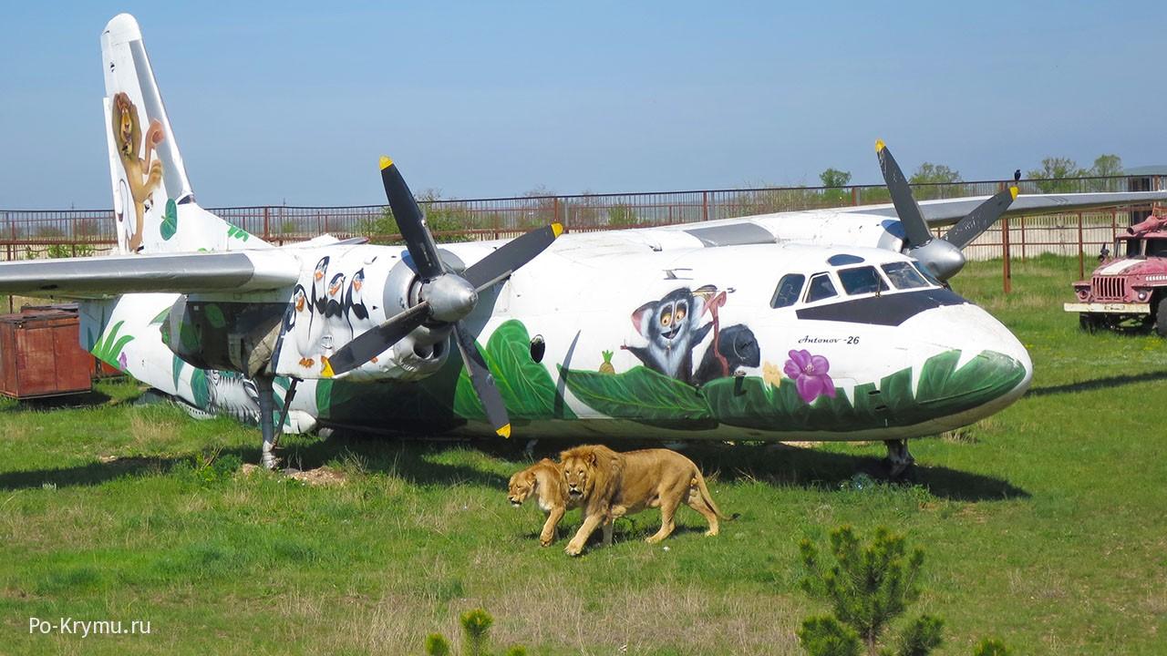 Сафари-парк львов Тайган, Крым, Белогорск.