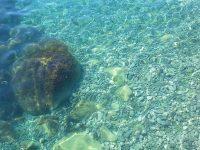 Отдых на курорте Даниловка в Крыму