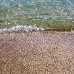 Отдых в Прибрежном у Судака