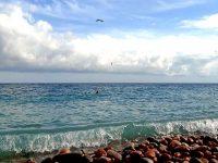 Отдых на курорте Сатера в Крыму