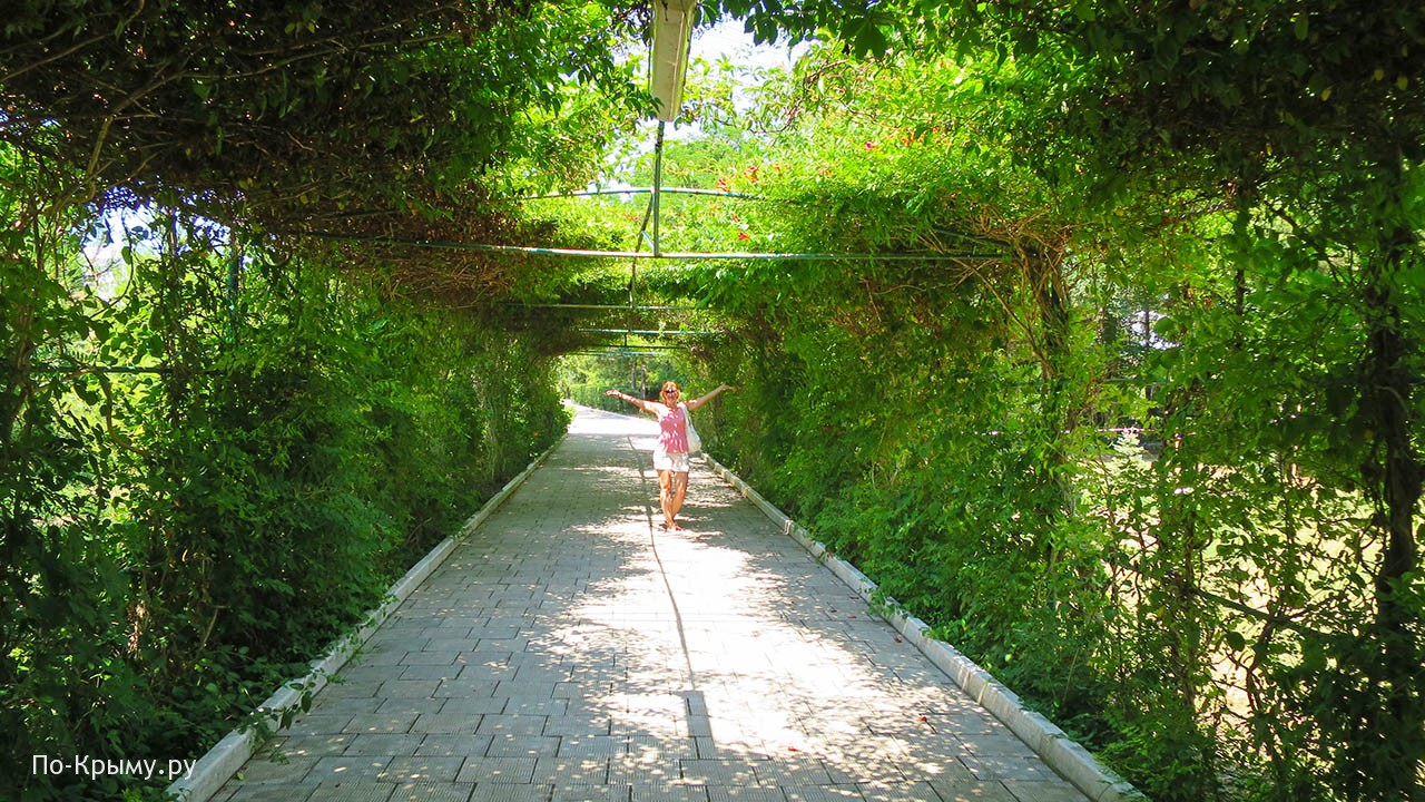 В парке Оленевки