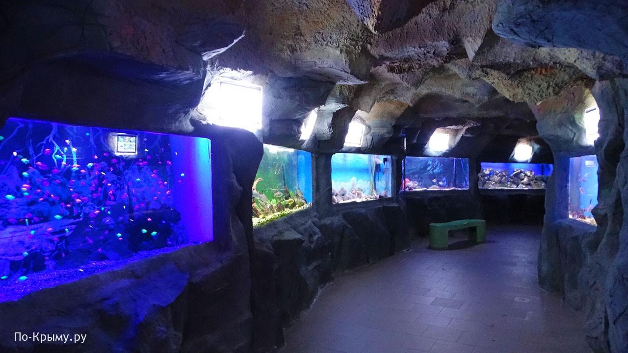 Ялтинский аквариум «Подводный грот»