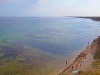 Отдых на курорте Окуневка в Крыму