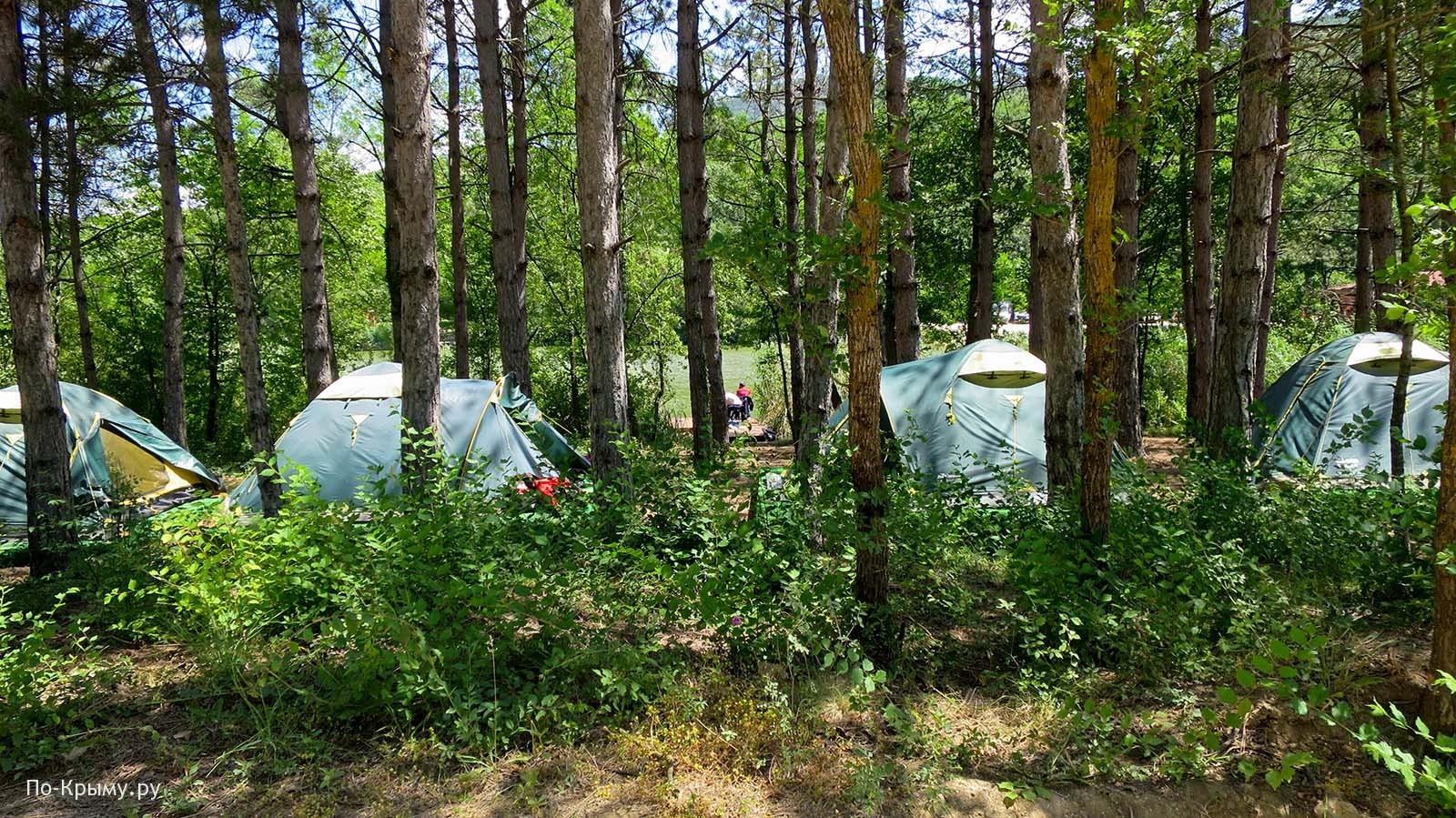 Торопова дача, палаточный городок