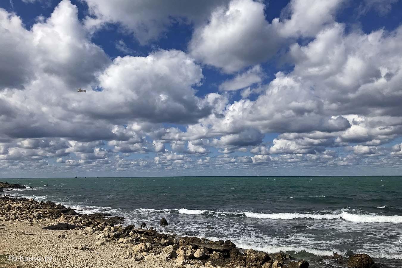 Дикий пляж у парка Победы