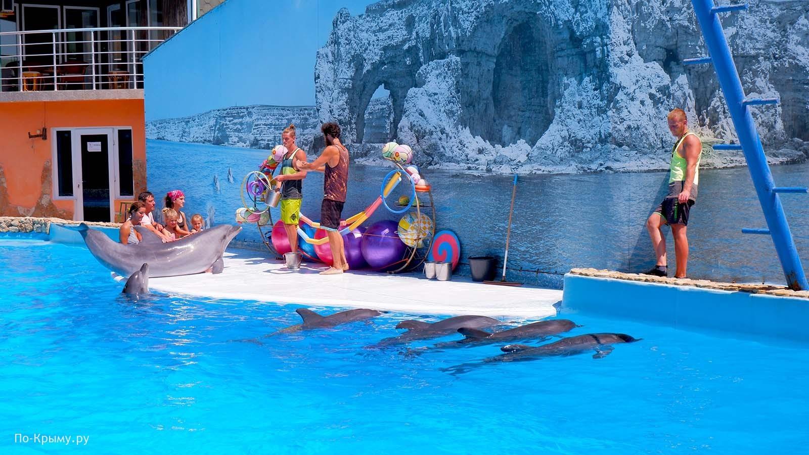 Дельфинарий, Большой Атлеш, Оленевка