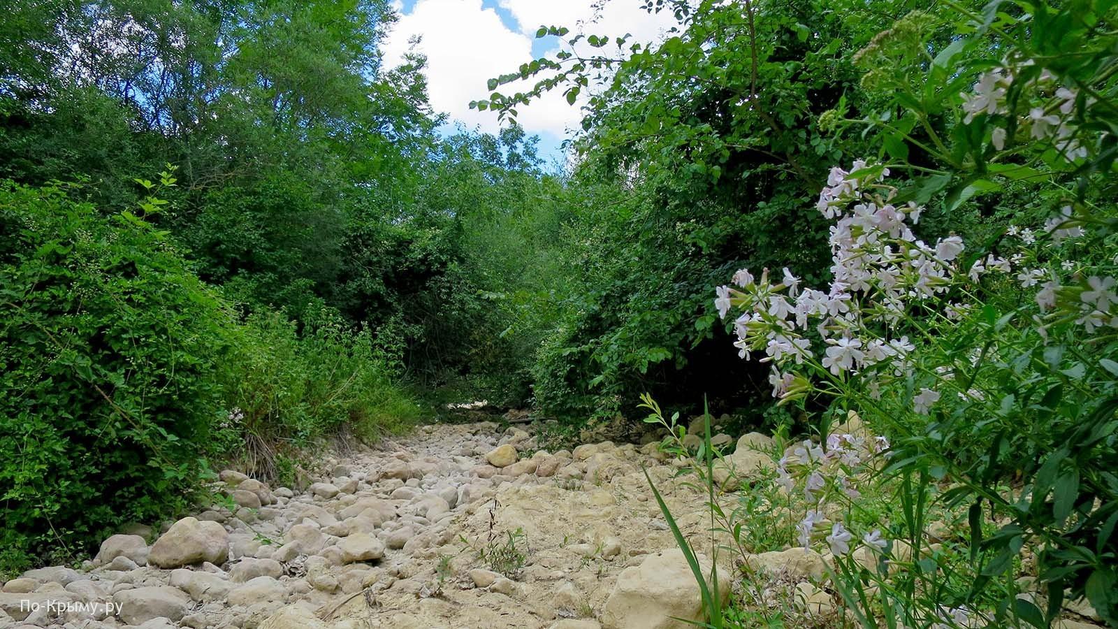 Крым, каньон Узунджа - река летом пересыхает