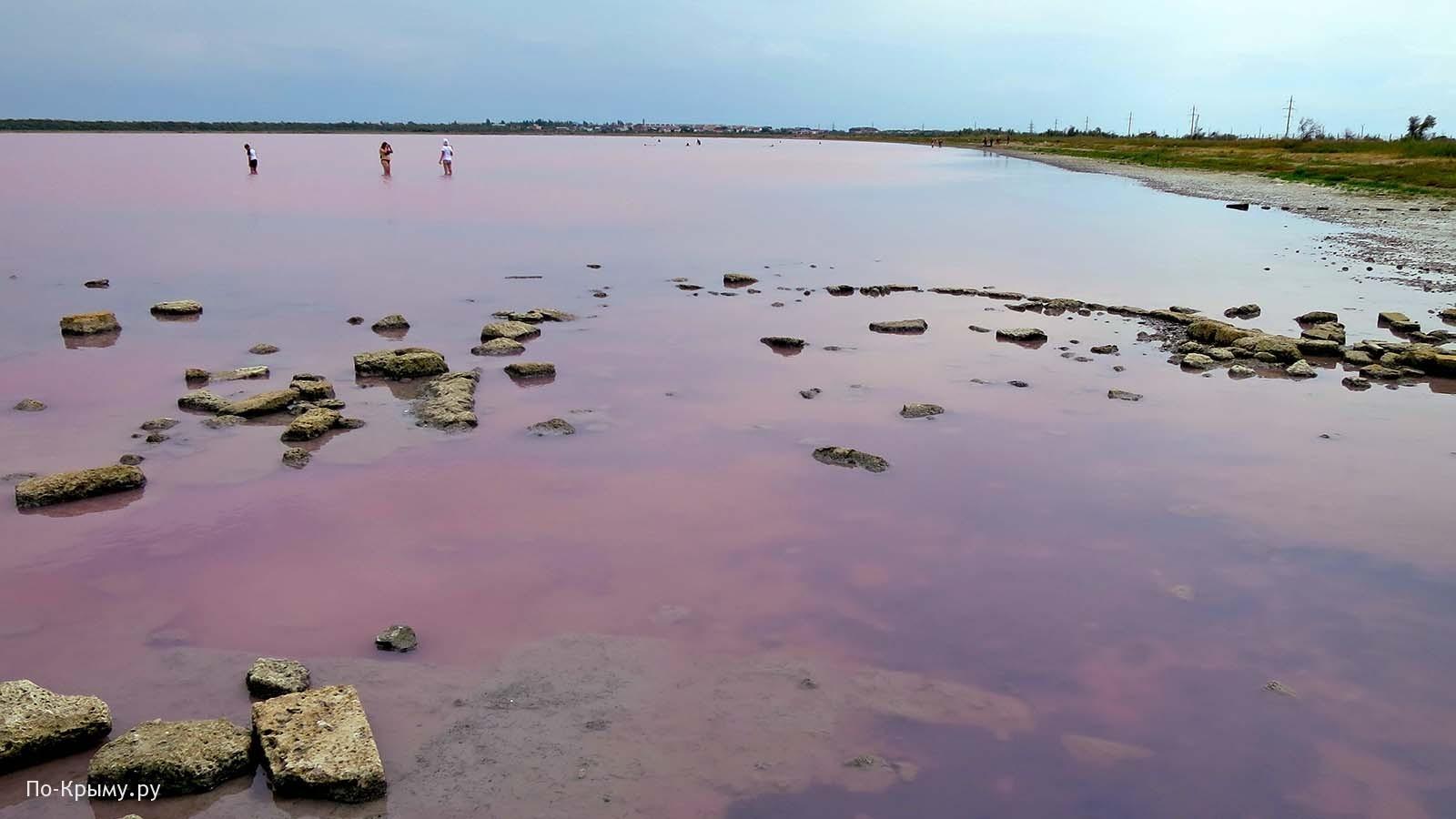 Почему Сакское озеро розовое?