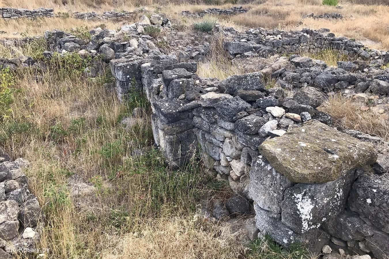 На руинах Мирмекия, Боспорское царство