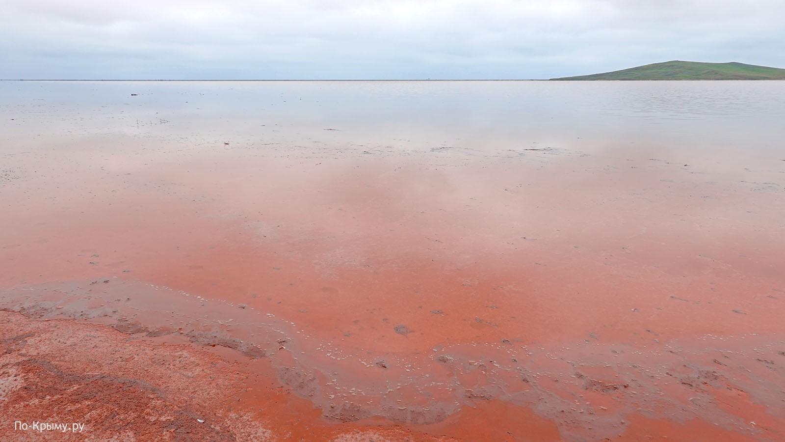 Соленое Кояшское озеро весной