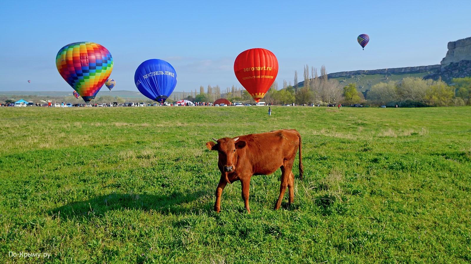 Крым, воздушные шары, май
