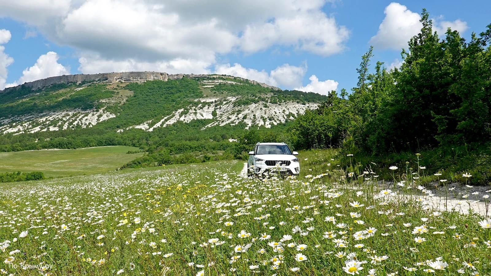 Все об аренде авто в Крыму: условия, цены, оптимальный прокат машин